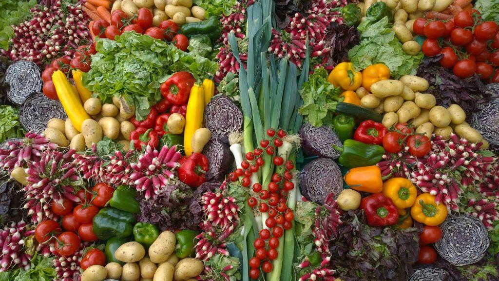 Algunas verduras, entre los alimentos que dan energía a tu mascota