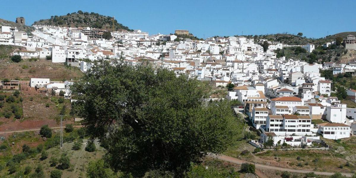 Varias propuestas para descubrir Almogía con perro. Foto: Turismo de Andalucía