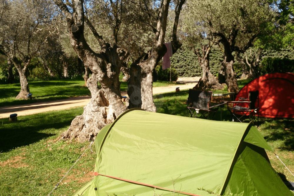 Dónde dormir en Alquézar con tu perro: Camping Alquézar
