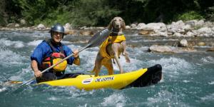 Hacer canoa-raft y/o kayak con tu mascota