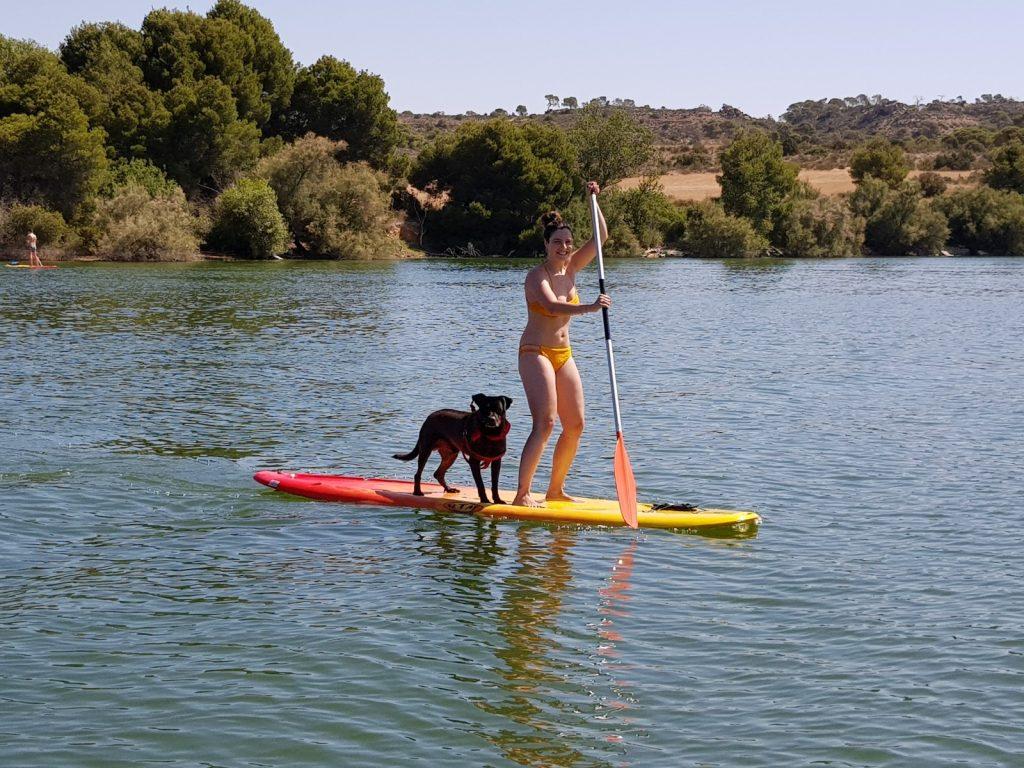 Puedes hacer paddle surf con tu perro en Lake Caspe Camping