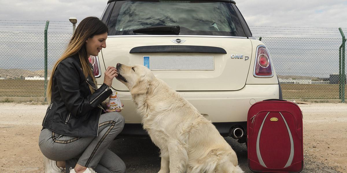Es aconsejable llevar su alimento y snacks en la maleta canina