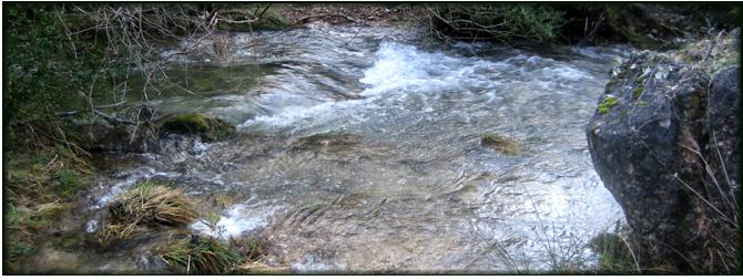 Río Aguamulas. Foto: Sierras de Cazorla, Segura y Las Villas