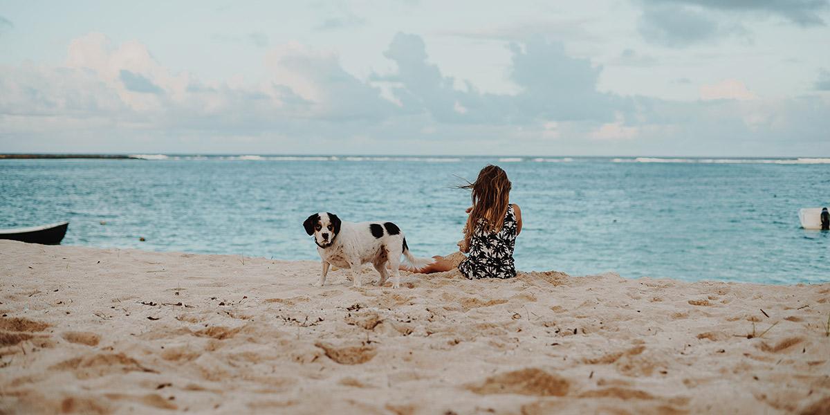 Playas caninas para disfrutar del verano