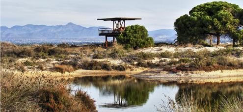 Ruta El Pinet, en el Parque Natural Salinas de Santa Pola. Foto: Turismo de Santa Pola