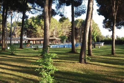 Zona de piscina con césped y sombra