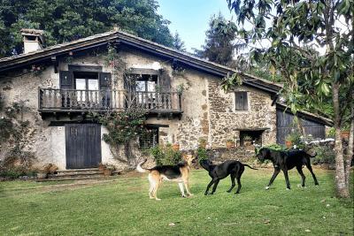 Mas Els Plans dog friendly